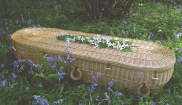 Cromer Willow Coffin