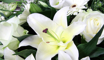 White lily with white roses and green foliage